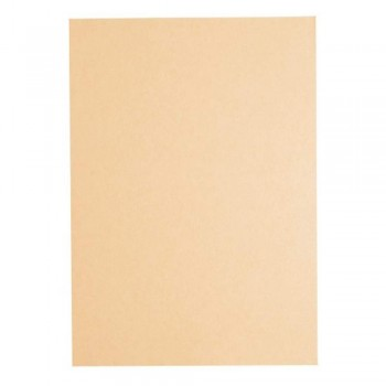 Light Colour A4 80gsm Paper - Peach